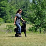 pittsburghdogtrainingandgermanshepherddogs89
