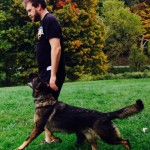 Pittsburgh Dog Training and German Shepherd Dogs45