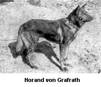 HorandvonGrafrath